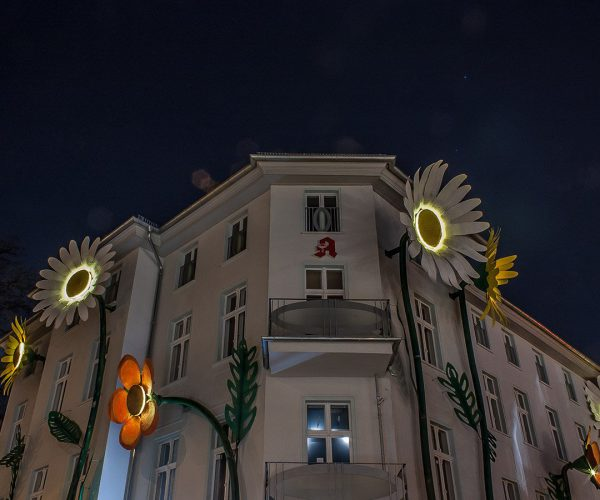 foxp2-architekturbüro-berlin-projekt-riesenblumen-treptow-galerie-nacht-ecke
